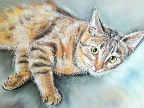 chat lulu  90X70 canson