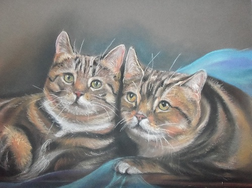 deux chats 70X50 canson