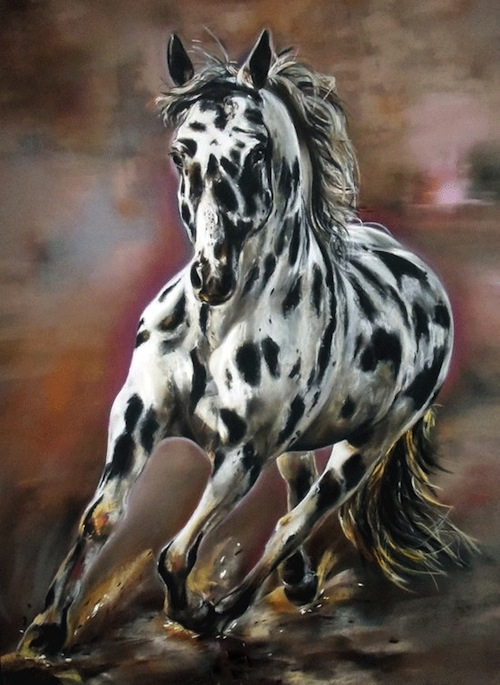 appaloosa marylise froehly artiste peintre animalier. Black Bedroom Furniture Sets. Home Design Ideas
