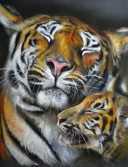 tigres tendresse 70X70 pastelcard