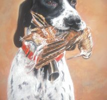 chien de chasse à la becasse pastel 30x40 Marylise Froehly