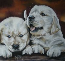 CHIOTS GOLDEN PASTEL 80X60 SITE MARYLISE FROEHLY