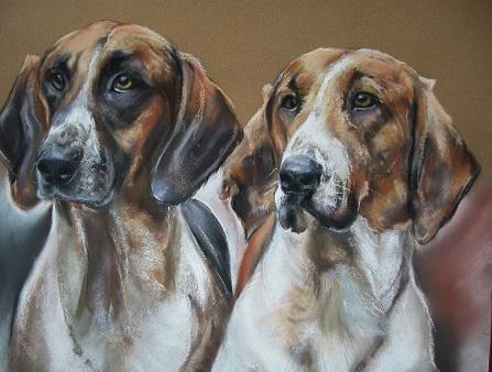 chiens de venerie pastel card 50×50