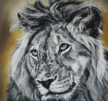 portrait lion 45x45 pastel card
