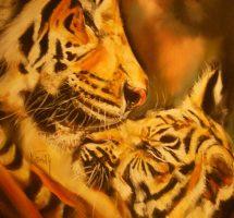 tigres tendresse 2
