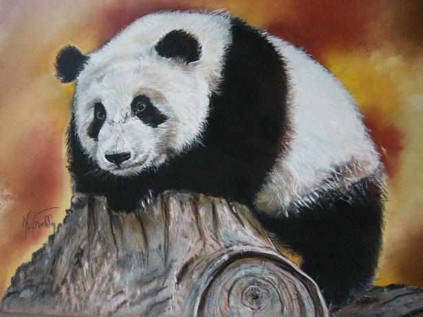 Panda  pastel 50×40