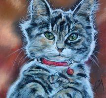 Chat Clochette pastel 25x35 site