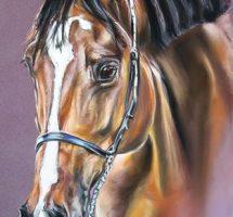 cheval -pastel-40x50