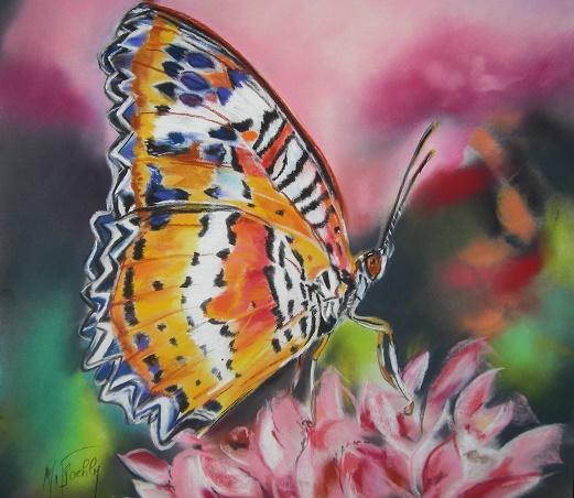 papillon pastel 40×40