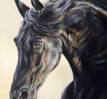 Cheval noir de Charlie - pastel 30x40 -