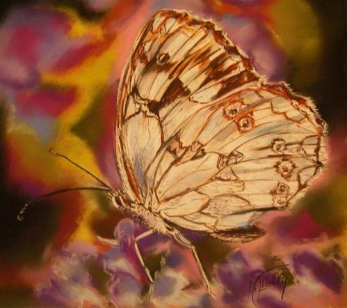papillon2 pastel 40×40