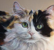 chat aux regard vert -pastel 30x21 -site