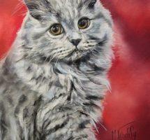 chat gris - pastel 20x30 -