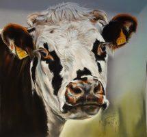 vache -pastel- 30x30 site