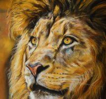 LION pastel 35x30