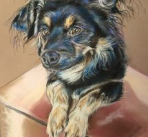 Buddy chien d'Esther 35x25