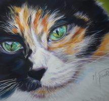 regard de chat2 - pastel 24x30 -