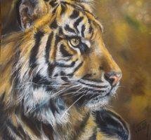 Pastel Tigre 35x30.jpg2
