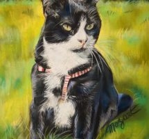 Chat de Martine MOZART 24X30