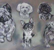 chiens de Marie Jo pastel 100x70