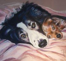 chiens de Manuela 30x40 pastel