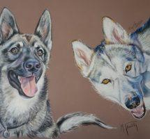 mystic et Mayka huskys LEA pastel 70x50