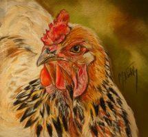 portrait poule 15x15