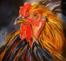 Portrait poule coq - pastel 15x15 -