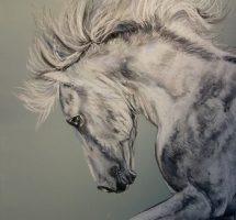 cheval blanc pastel 50x70 aout 2017