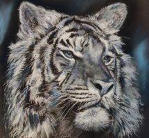 tigre noir et blanc pastel 60x60