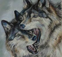 les loups pastel art spectrum 50x70