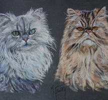 Bijou et Boston chats de Marie Eve 50x40 nov17