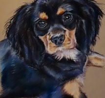 Manon chien de Sylvie 30x40