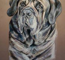 Aslan chien d'Alexa 50x70