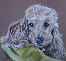 Ulyss pastel 30x30 chien de Pascale Seloncourt