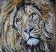 Lion - PASTEL 50X70 -FEV18