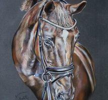 portrait cheval bai pastel 40x50