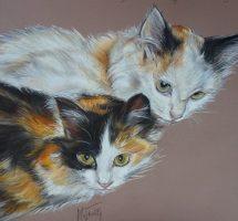 Deux chats 45x35 pastel mars18