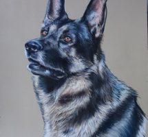 Gombo chien d'Emilie pastel30x40