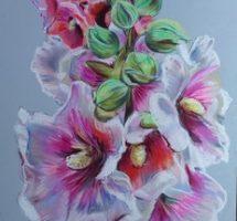 rose tremiere pastel 25x30