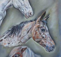 chevaux Francine 50x70 juin18.jpg2redim