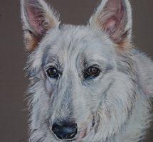 GAIA chien de Sandrine 24x30 oct18site
