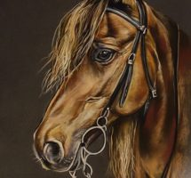 portrait cheval 30x50 dec18site
