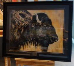 Bison 65×85