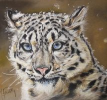 PANTHERE DES NEIGES pastel 24x30