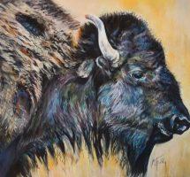 bison - pastel 70x50 -site