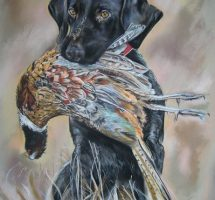 chien au faisan pastel card 70x90