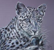 leopard 50x50 art spectrum mars18.jpg1