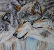 les loups 90x60 janv19.jpgsite