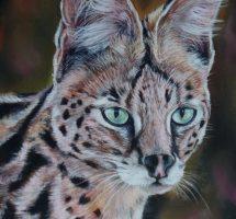 serval pastel 24x30 dec20
